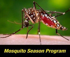 Mosquito Control in Columbia SC